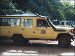 excursion masai mara
