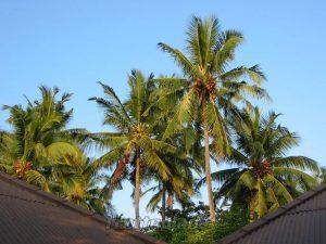 Les-Maldives-Trotteplanet-8
