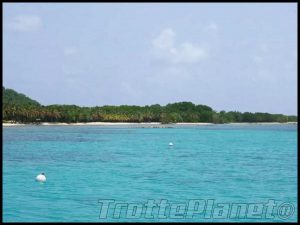 ile moustique iles grenadines
