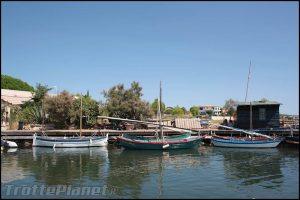 Bouzigues barques